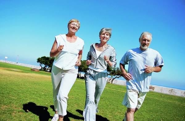 спорт для пожилых